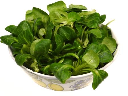 rapunzel: A bowl with Corn salad (Valerianella locusta) a edible leaf vegetable over white