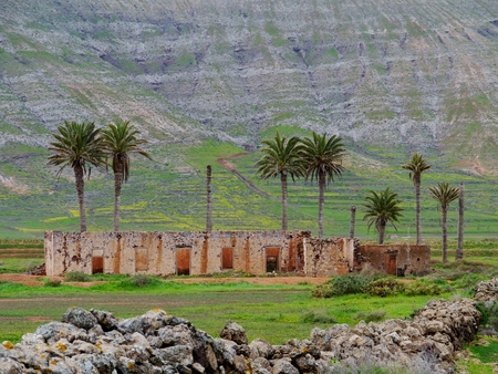 oliva: A ruin with palm trees in the surroundings of the town La Oliva on the island  Fuerteventura one of the Canary islands in the Atlantic Ocean belonging to Spain