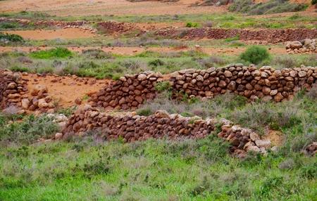 oliva: Dry stone walls in the desert surroundings of the small town La Oliva on the island  Fuerteventura  in Spain