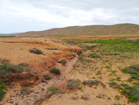 oliva: Dry creeks and river beds form the red earth in the surroundings of La Oliva on the island  Fuerteventura  in Spain Stock Photo