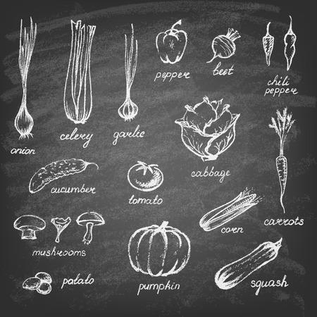 křída: Kolekce ručně kreslených zeleninou na tabuli. Ilustrace