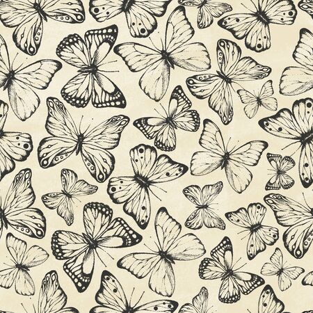Set of hand drawn butterflies on old paper. Entomological collection of highly detailed hand drawn butterflies. Retro vintage style. Vector illustration. Seamless pattern.
