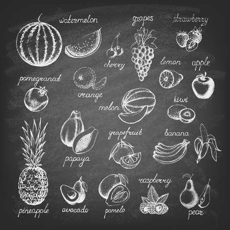 Set of fruits on the blackboard. Hand drawn elements. Vector illustration.