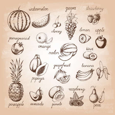 Set of fruits on old paper. Hand drawn elements. Vector illustration.