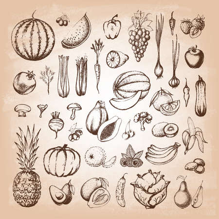 Set of fruits and collection of hand-drawn vegetables on old paper. Vector illustration. 일러스트