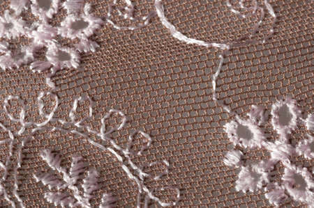 embroidered: embroidered lace Stock Photo