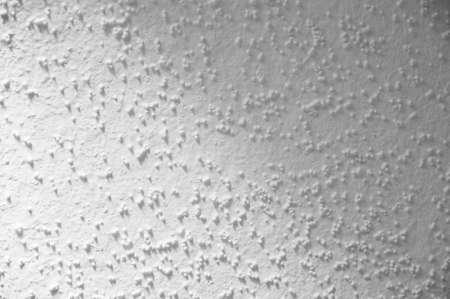 Scratch Coat wall photo