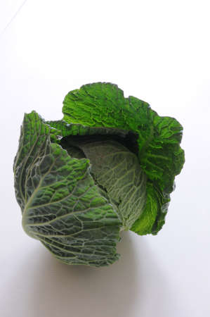 open savoy cabbage photo
