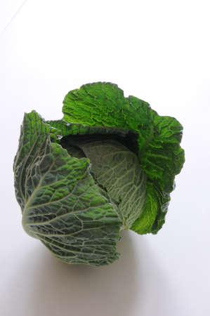open savoy cabbage photo