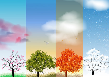 four seasons: Four Seasons Banners with Abstract Trees Illustration