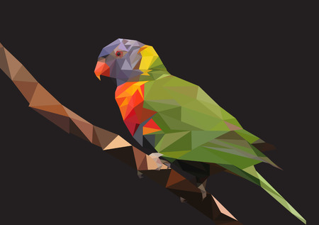 triangular eyes: Abstract Low Poly Parrot, Rainbow lorikeet  - Vector Illustration