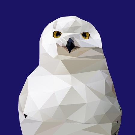 kârlı: Özet Düşük Poly Karlı Baykuş, (Bubo scandiacus) - Vector Illustration