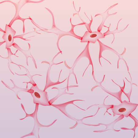 myelin sheath: Neuron, nerve cell - Vector Illustration Illustration
