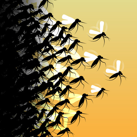 extreme close up: Mosquitoes in Flight - Vector Illustration