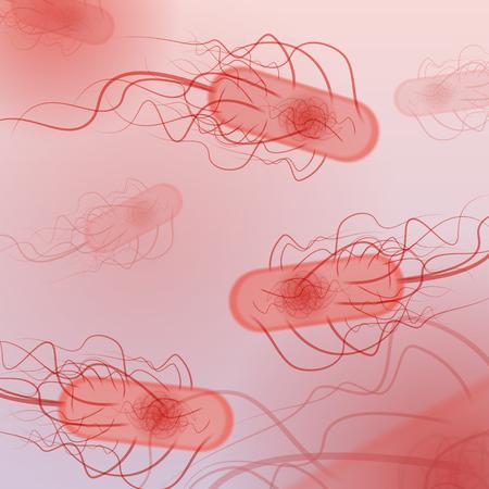 defocussed: Group of E. coli Bacteria - Illustration