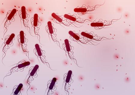 Group of E. coli Bacteria - Illustration