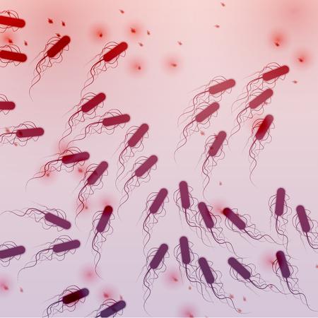 e coli: Group of E. coli Bacteria - Vector Illustration