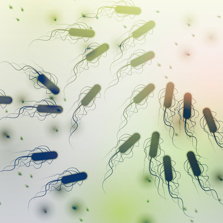 defocussed: Group of E. coli Bacteria - Vector Illustration