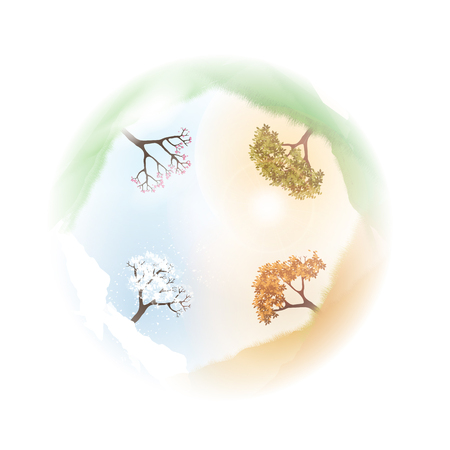 Four Seasons Spring, Summer, Autumn, Winter Banners with Abstract Trees - Vector Illustration. 向量圖像
