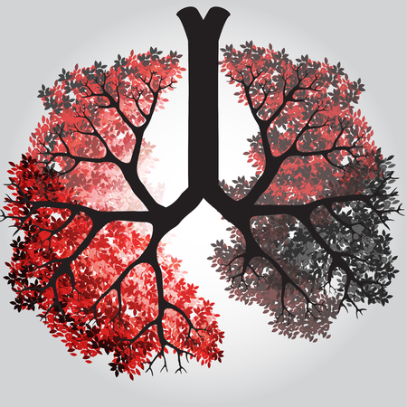 Tree Branches Like Lungs - Vector Illustration