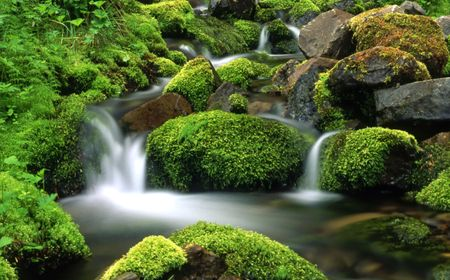 stream: Mountain stream Stock Photo