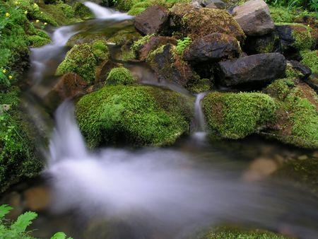 Mountain Stream        photo