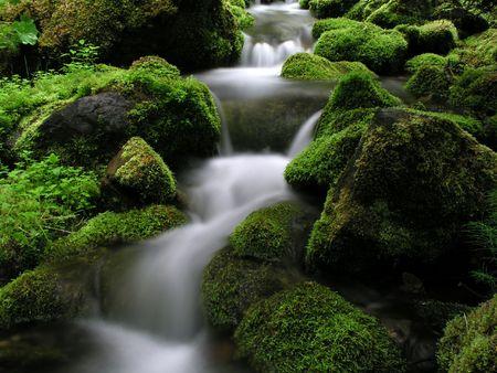 Mountain Stream in North Sweden          photo