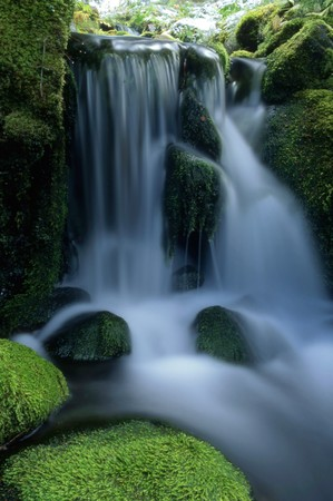 Beautiful small waterfall in forest photo