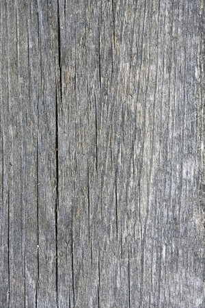 Texture of nature fence weathered wood background   photo