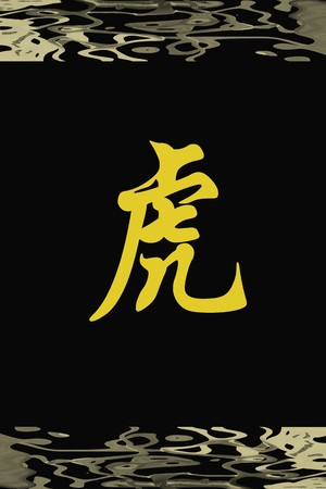 Chinese characters of TIGER on black background photo