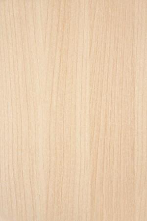 puertas de madera: Textura de fondo madera portarretrato  Foto de archivo