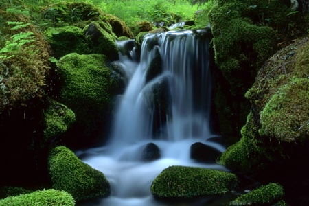 Beautiful landscape of flowing water from mountain stream  photo