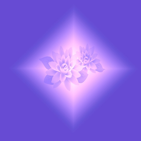 lotus effect: Beautiful abstract lotus background