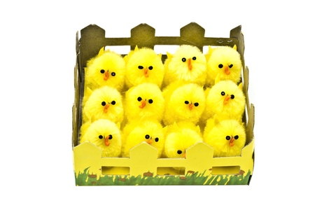 Yellow chickens in box closeup on white background Stock Photo - 9292915