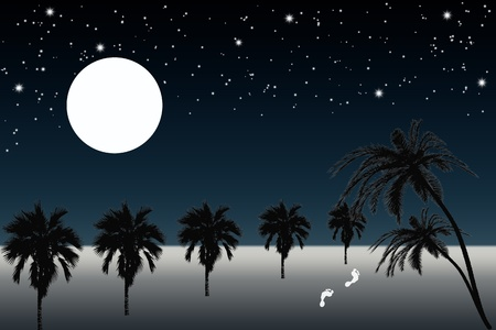 Beautiful  view of full moon night and palm trees on the beach photo