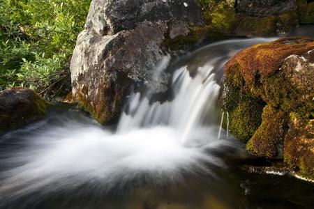 Eau qui coule du ruisseau de montagne magnifique Banque d'images