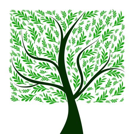 plants growing: Bellissimo albero arte isolato su sfondo bianco Vettoriali