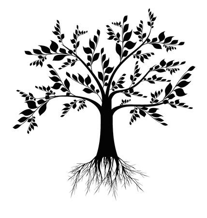 plants growing: Bella silhouette albero arte isolato su sfondo bianco