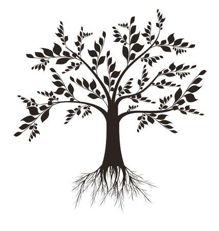 growing tree: Beautiful art tree silhouette isolated on white background