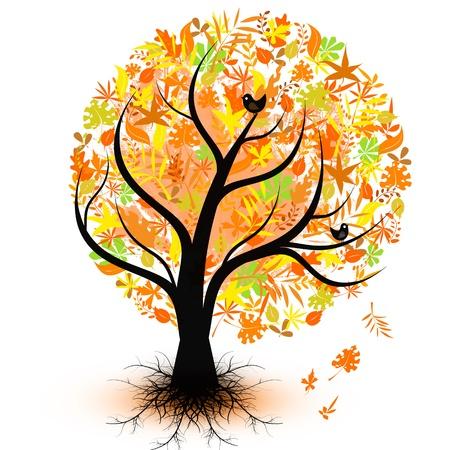 Arbre automne coloré isolée sur fond blanc