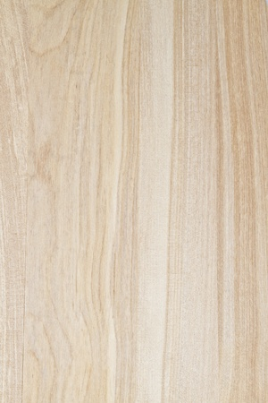 striped texture: Texture of wood background closeup
