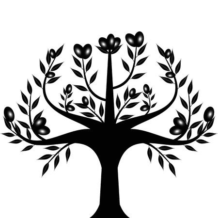 olivo arbol: Olivo Resumen aislados sobre fondo blanco Vectores