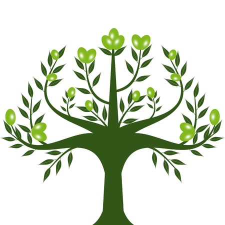 Abstract olive tree isolated on white background Vector