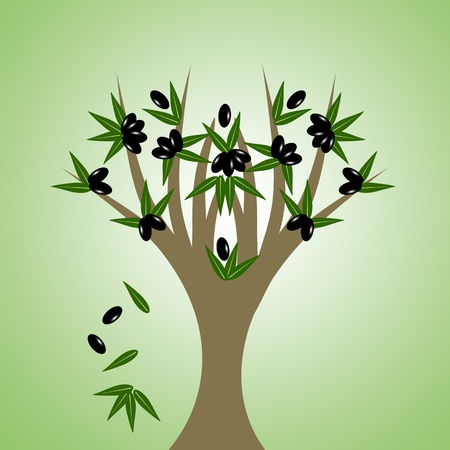Abstract olive tree isolated on green background Vector