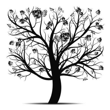 planta con raiz: �rbol hermoso arte aisladas sobre fondo blanco