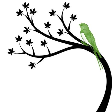 Beautiful tree and bird isolated on white background Illustration