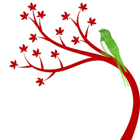Beautiful tree and colorful bird isolated on white background Stock Vector - 10957536