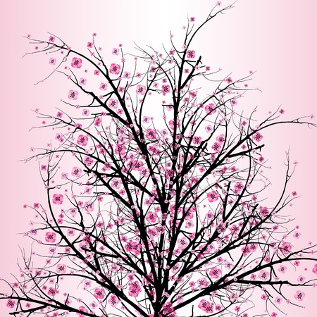 Beautiful blossom cherry isolated on pink background  Vector