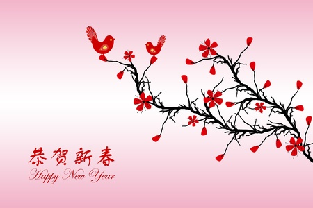 Beautiful background of Chinese New Year greeting card Stock Vector - 11785759
