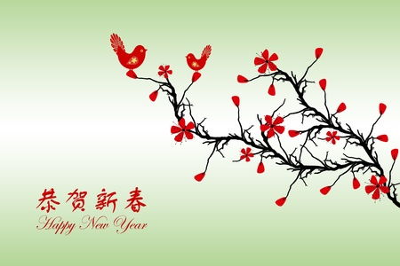 Beautiful background of Chinese New Year greeting card Stock Vector - 11785760